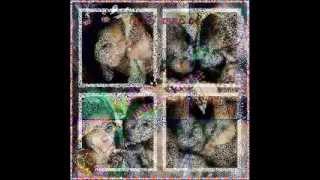 Download ALA ALa hustla familia.EMOREJ .FT ANN KHULETZ.wmv MP3 song and Music Video