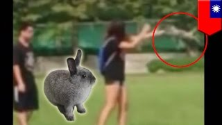 Animal cruelty: woman throws rabbit repeatedly against the ground