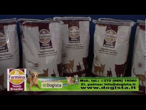 breeder s own pet foods inc case Life's abundance enriching life one product at a time ® health is more than just eating right and exercising – it's about cultivating the right attitude and making a commitment to feel better to be better.