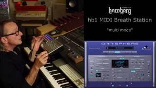 hornberg hb1 multi mode