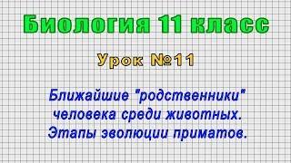 биология 11 класс (Урок11 - Ближайшие