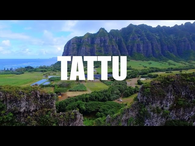 Team Tattu at 2016 World Drone Fpv Racing Championships