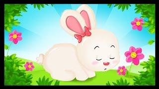 Mon petit lapin a bien du chagrin - Comptines pour les bébés - Titounis