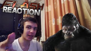 "Reaction | 7 серия 2 сезона ""The Flash/Флэш"""
