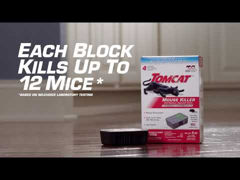 How To Eliminate Mice Using The Tomcat® Mouse Killer Disposable Bait Station