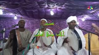 أولاد الشيخ البرعي - في المدينة ساكن
