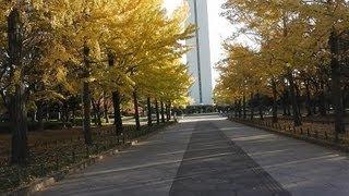 大仙公園は「日本の都市公園百選」の一つに選定されている大阪府堺市に...