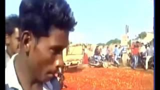 الطماطم الهندية ضحية إلغاء العملة فئة 1000 روبية