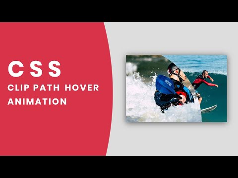 Amazing Image Clip Path Hover Animation | CSS Clip path Property