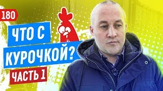 """Закрытие и возвращение """"Курочки"""". Фудтрак"""