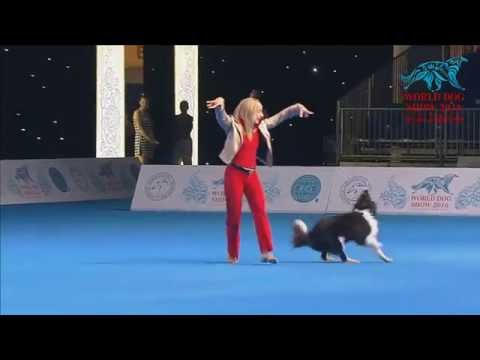 FCI Dog dance World Championship 2016  Winner freestyle - Yvonne Belin and Alice (Switzerland)