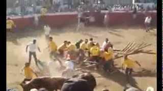 Свирепый бык атаковал толпу  Ибо нех