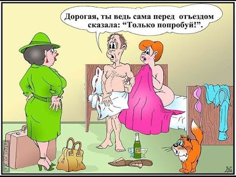 - анекдоты -