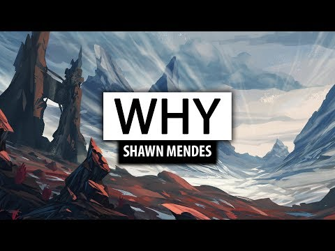 Shawn Mendes ‒ Why [Lyrics] 🎤