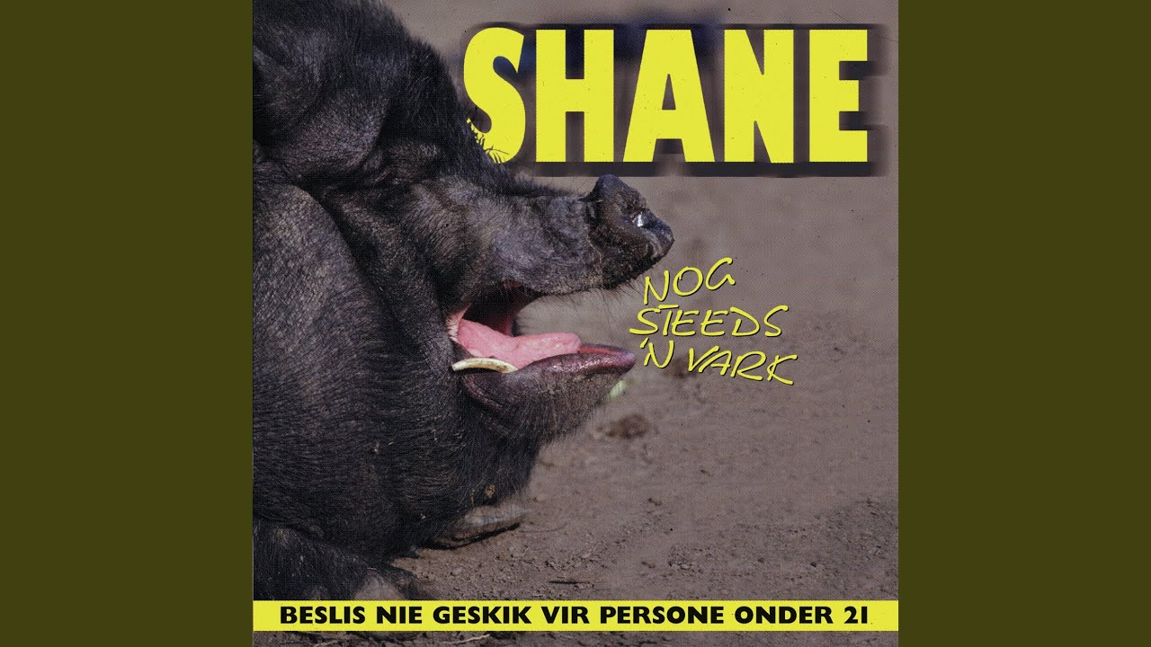 Download My Naam Is Shane