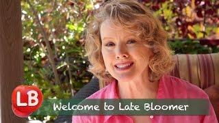 Late Bloomer - Welcome to Kaye