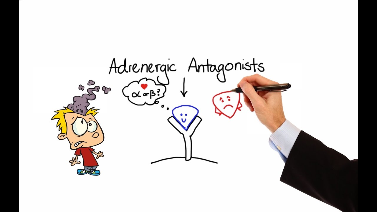 Pharmacology Alpha Amp Beta Blockers Adrenergic