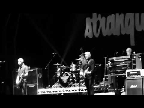 The Stranglers - Bear Cage