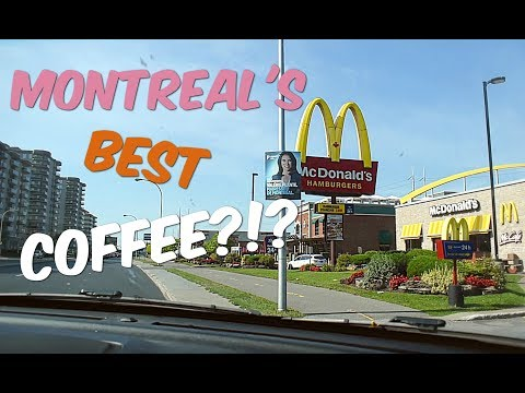 Who Has Montreal's Best Coffee? [Food Vlog With Viva Frei]