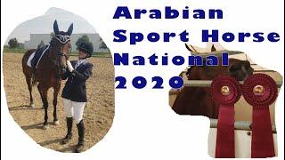 Arabian Sport Horse National 2020, Part 1 - VLOG-35