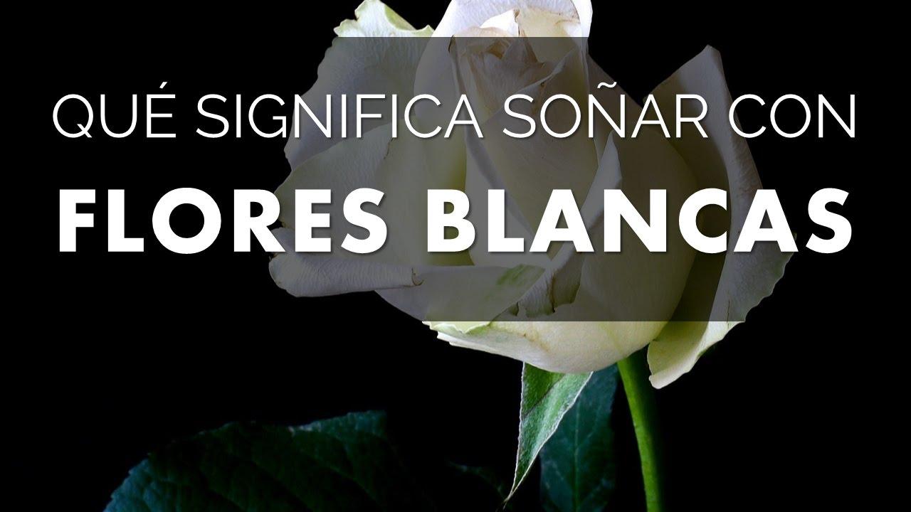 Qué Significa Soñar Con Flores Blancas Youtube