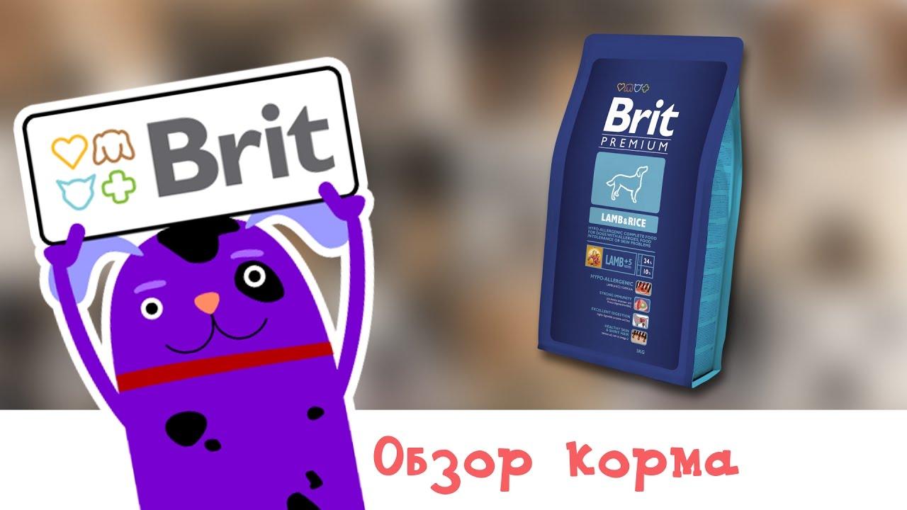 Купить КОРМ Brit(Брит)Premium Junior Small S зоомагазин в Минске .