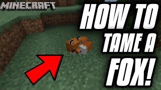 How To Tame A Fox In Minecraft On Xbox/PC/PE! (FASTEST METHOD!)