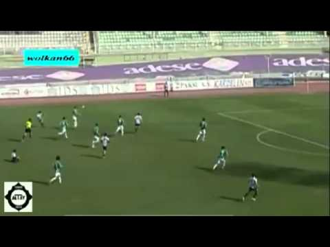 Best soccer goal ever scored in a volley!!