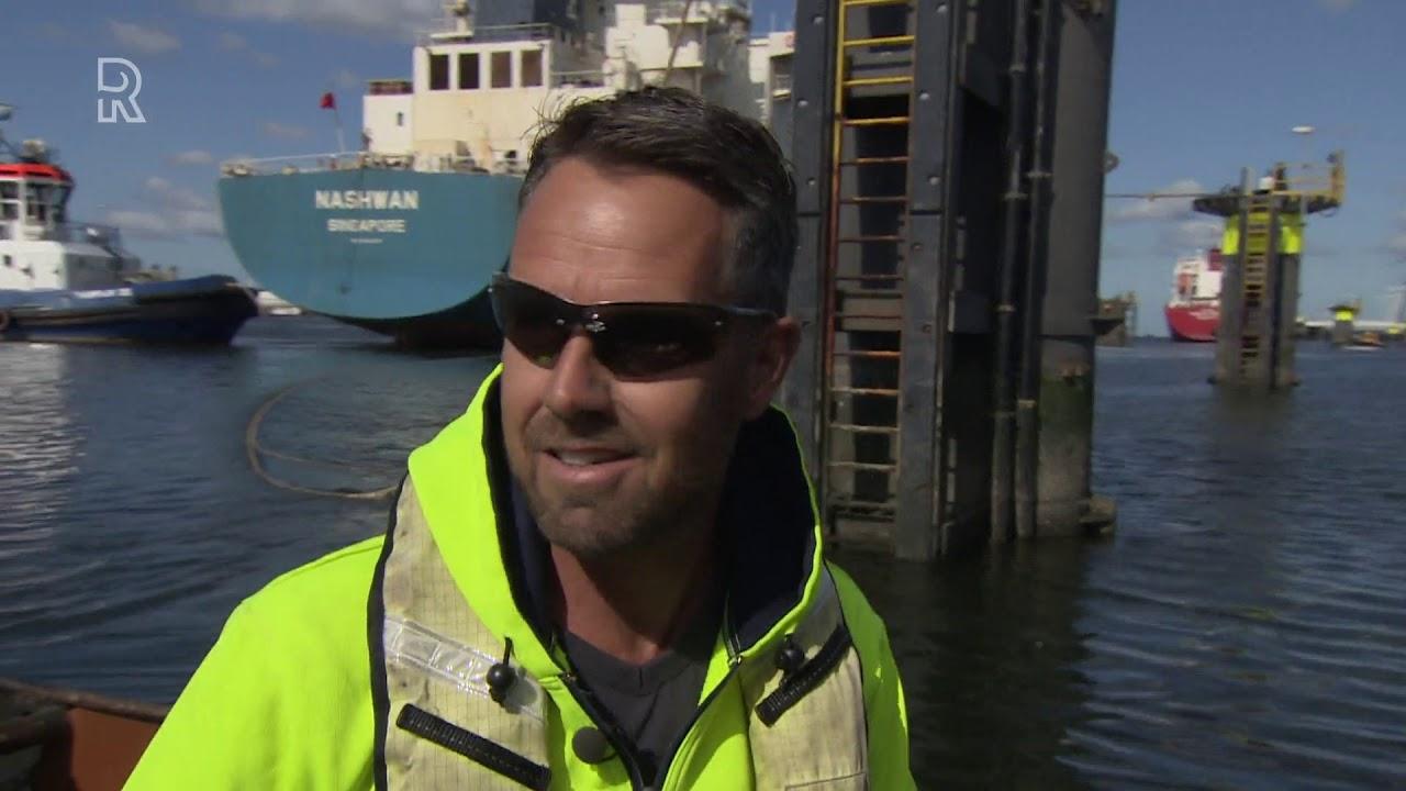 Download Roeiers in de Rotterdamse haven