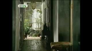 廣告林志玲 植物優格   YouTube3