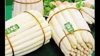 Белая спаржа | выращивание спаржи бизнес | обмен зарубежным опытом Италия |