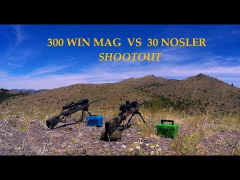 Best  30 Caliber Magnum for Hunting: Which Cartridge Won