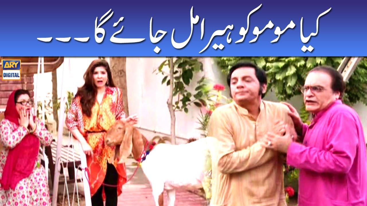 Kiya Momo Ko Heera Mil Jayega - Mehmood Sahab | Bulbulay