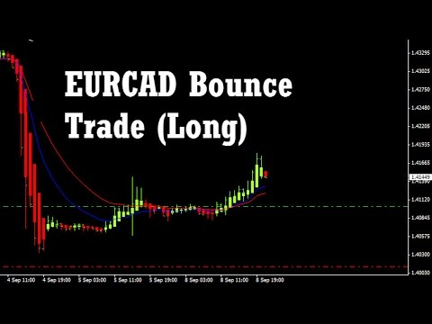Daily trade forex live