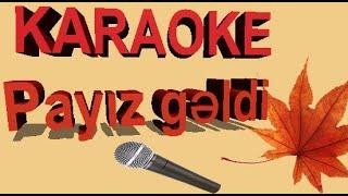 Payiz geldi ucdu getdi quslar karaoke