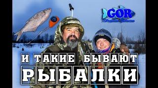 Бывают и такие рыбалки Гирлянда это не только рыба