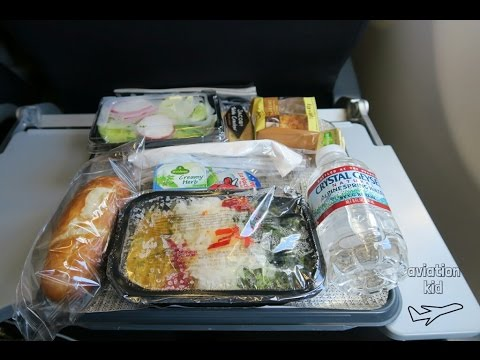 AMERICAN AIRLINES ECONOMY CLASS FLIGHT REVIEW | A330-200 | FRANKFURT - CHARLOTTE