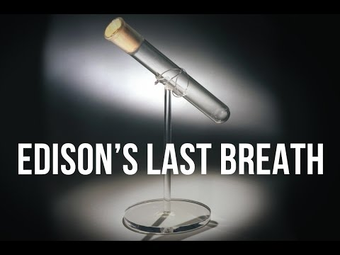 Edison's Last Breath   100 Wonders   Atlas Obscura