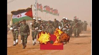 Sahara Occidental : Le Polisario évoque une intervention militaire au Maroc !