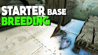 BUILDING THE STARTER BASE AND HATCHING! - Solo/Duo PvP Servers - Ark Survival Evolved Ep.2