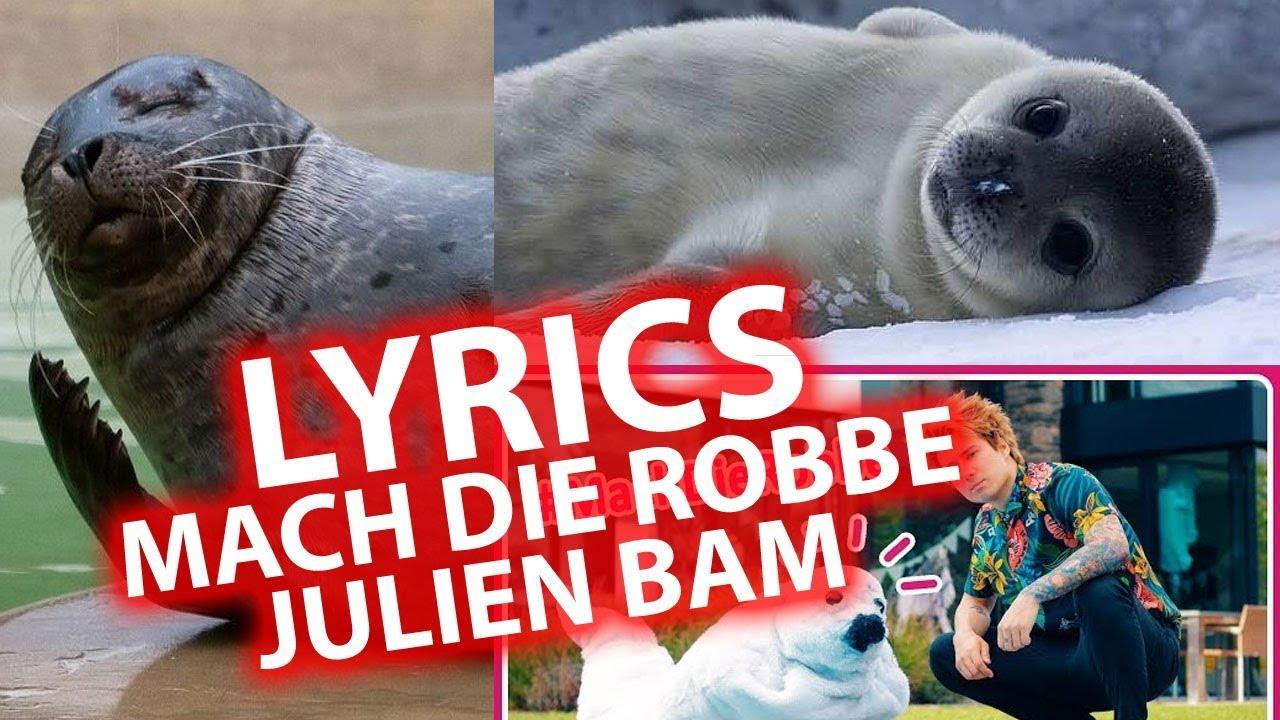 Lied Mach Die Robbe