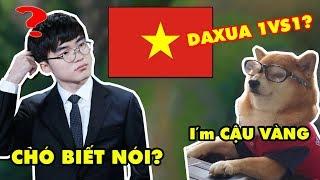 FAKER chạm mặt Cậu Vàng BRCNZE 5 / Bí Kíp Troll Team tại rank Việt Nam, gánh Quỷ Vương tận răng