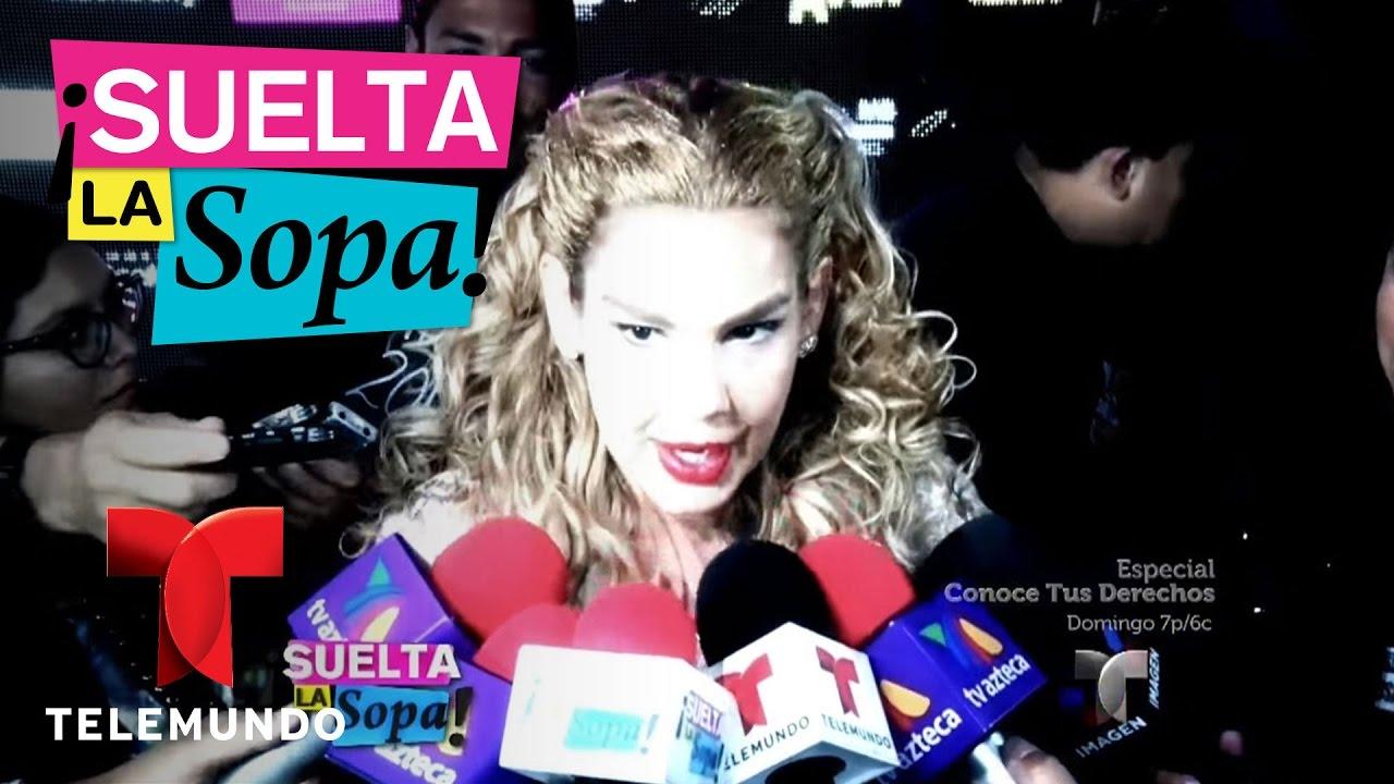Download Las frases espontáneas de los famosos como Niurka Marcos | Suelta La Sopa | Entretenimiento