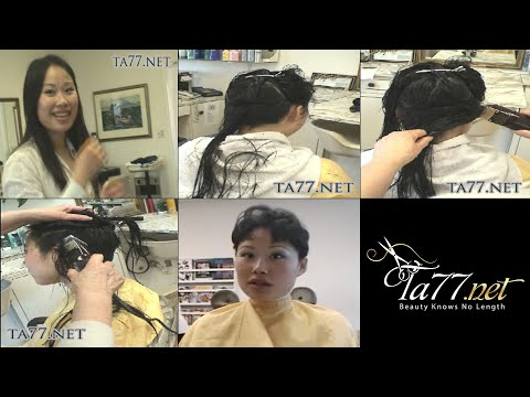 Asia SE - Pt 1: Clipper Cut Crop (Free Video)