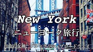 【ニューヨーク旅行②】地下鉄で市内観光 自由の女神、ブルックリン、ブロードウェイ New York Tour  Brooklyn, East Village, Times Square thumbnail