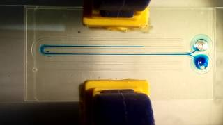 One step microfluidic device prototyping using a 3D printer