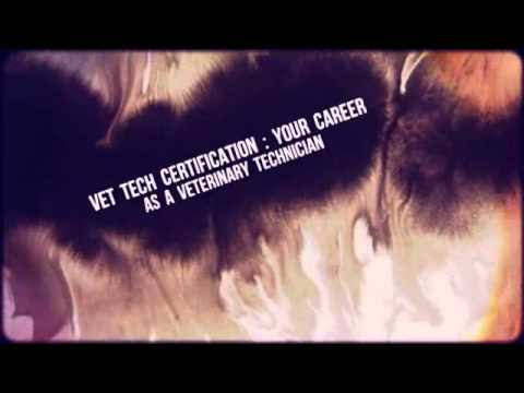 Veterinary Technician Job Description - Youtube