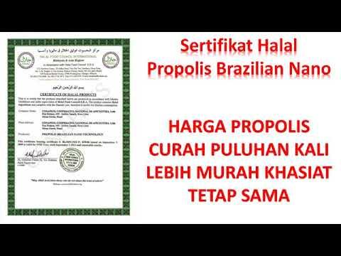 Agen Propolis Bogor WA 081809867604