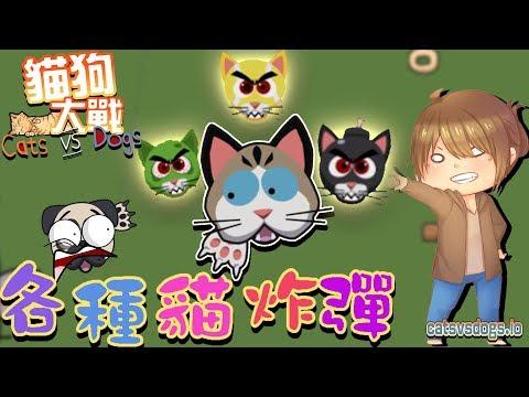 【巧克力】『CatsVsDogs.io:貓狗大戰』 - 風流倜儻~各種貓炸彈!