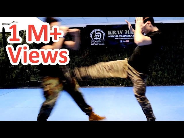KRAV MAGA TRAINING • How to use Front Kicks in a real fight